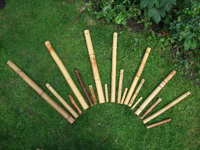 photo, 16 one-tone bamboo flutes arranged in half a circle on the grass