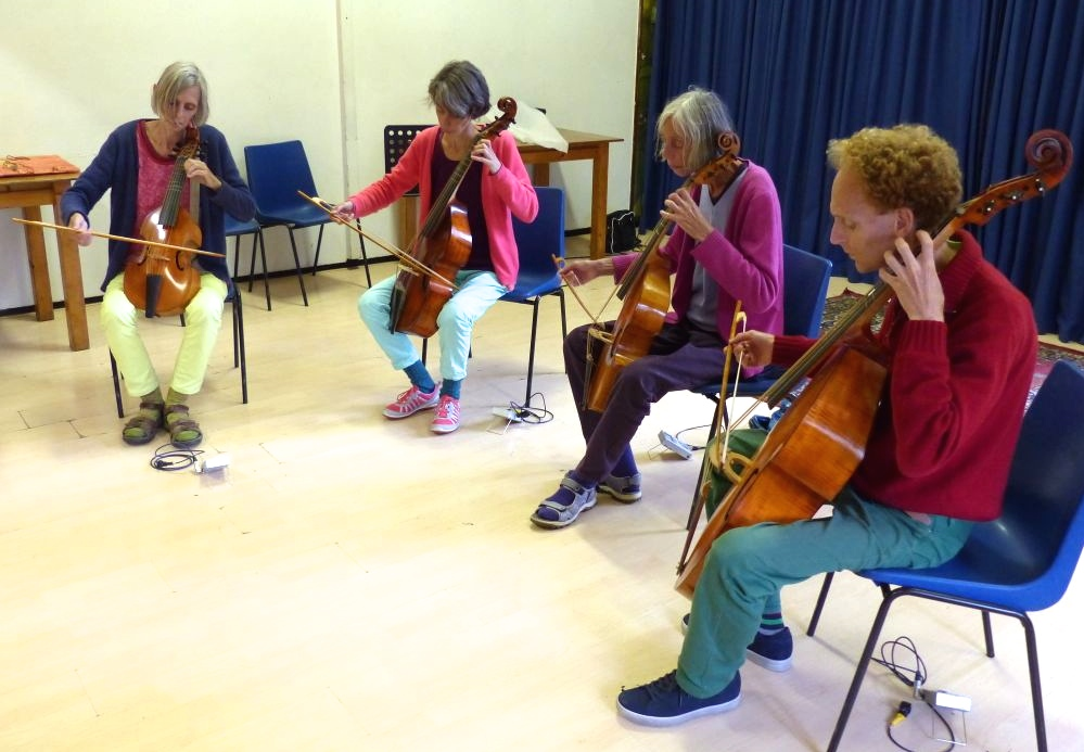 photo from our viola da gamba (viol) quartet at the birthday party of Ingrid, a friend of us, 30 August 2014